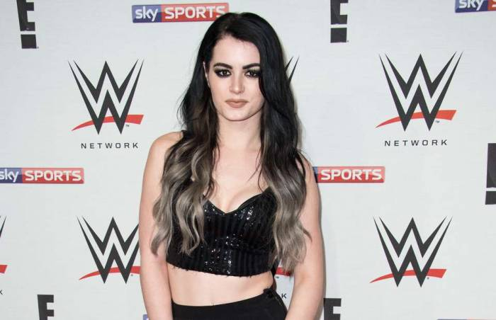 Paige Lifestyle, Wiki, Net Worth, Income, Salary, House, Cars, Favorites,  Affairs, Awards, Family, Facts u0026 Biography - Topplanetinfo.com | Biography  of Famous People