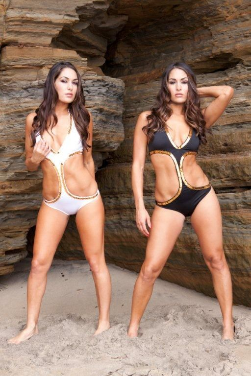 Pin on nikki and brie bikini photos
