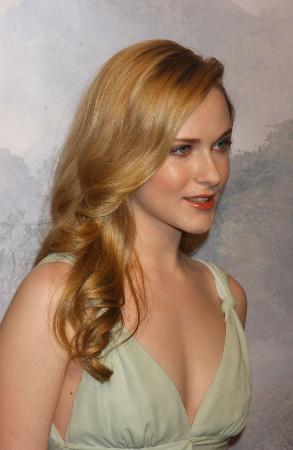 Hot Pics Hub: Evan Rachel Wood Hot Pics Hub